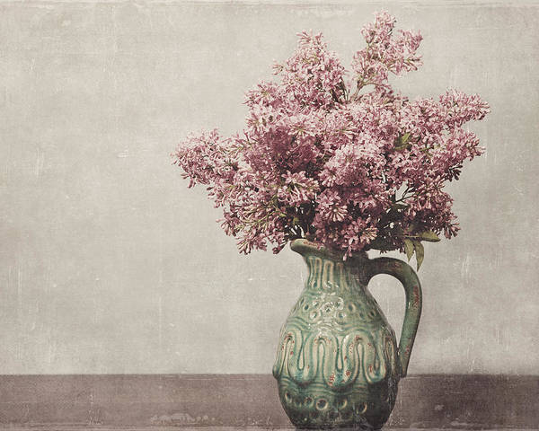 Pink Poster featuring the photograph Spring Is Here by Robin Blankenship