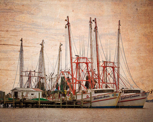 Florida Poster featuring the photograph St John's Shrimping by Debra and Dave Vanderlaan