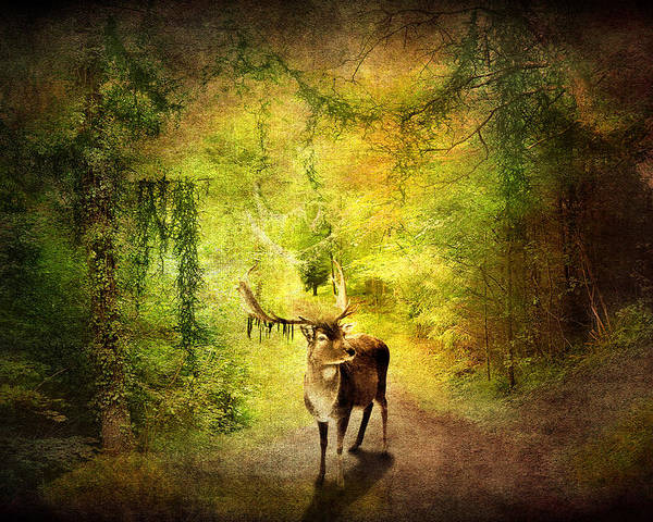 Artistic Poster featuring the digital art Stag by Svetlana Sewell