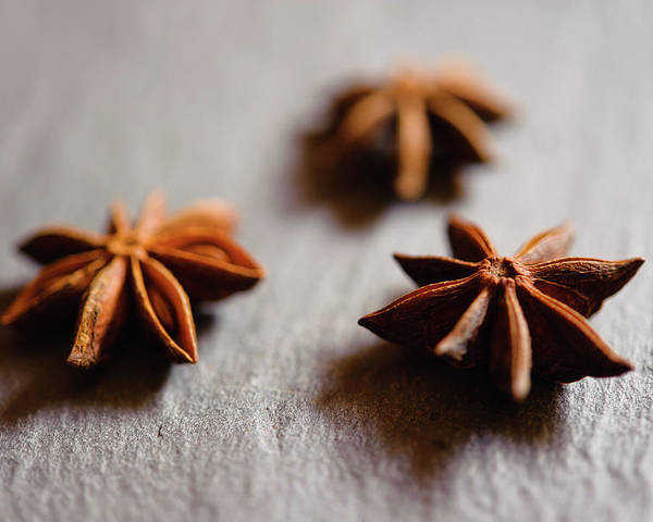 Horizontal Poster featuring the photograph Star Anise On Slate Tray by Alexandre Fundone
