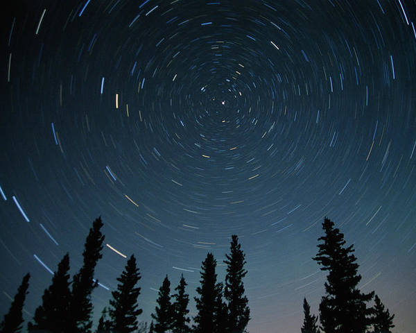 Color Images Poster featuring the photograph Star Trails, Sandilands Provincial by Mike Grandmailson