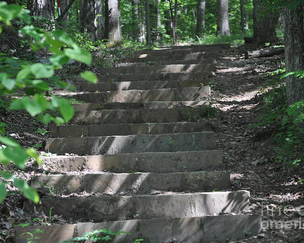 Stairway Poster featuring the photograph Step By Step by Karen McAfee