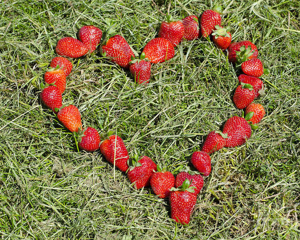 Heart Poster featuring the photograph Strawberry Heart by Mats Silvan