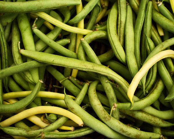 Green Beans Poster featuring the photograph String Beans by Tanya Harrison