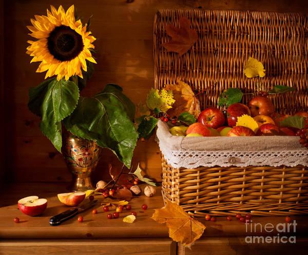 Sunflower Poster featuring the photograph Sunflower - Still Life by Boris Suntsov