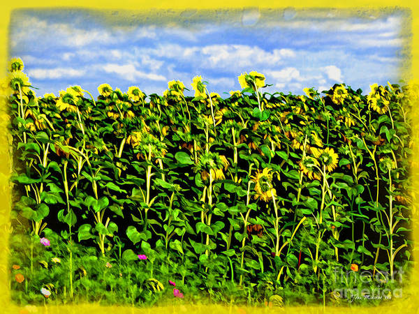 Sunflowers In France Poster featuring the photograph Sunflowers In France by Joan Minchak