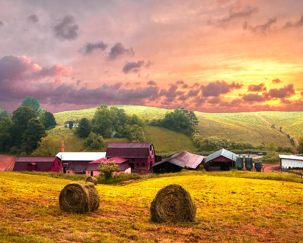 Barn Poster featuring the photograph Sunrise Pastures by Debra and Dave Vanderlaan