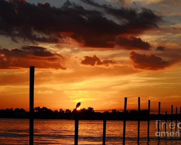 Sunset Poster featuring the photograph Sunset 1-1-12 by Lynda Dawson-Youngclaus