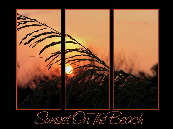 Sunset On Beach Poster featuring the photograph Sunset On The Beach by Carolyn Marshall