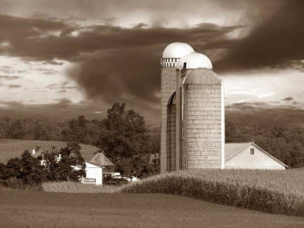 Farm Poster featuring the photograph Sunset On The Farm S by David Dehner