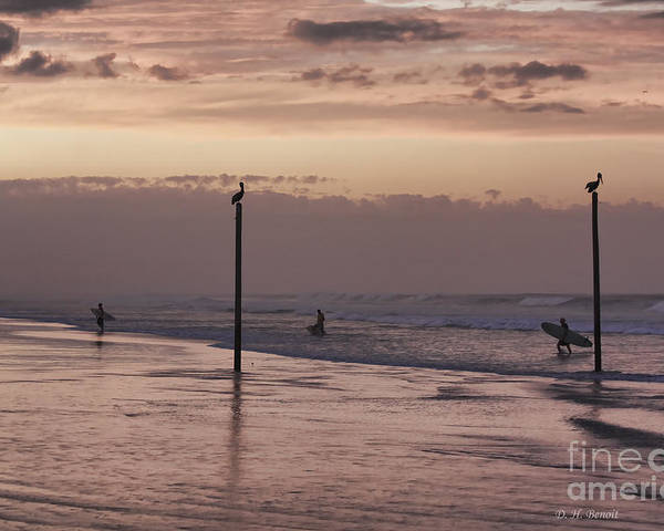 Surfers Poster featuring the photograph Surfers Pelicans And Pink Sky by Deborah Benoit