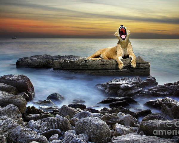African Poster featuring the photograph Surreal Lioness by Carlos Caetano