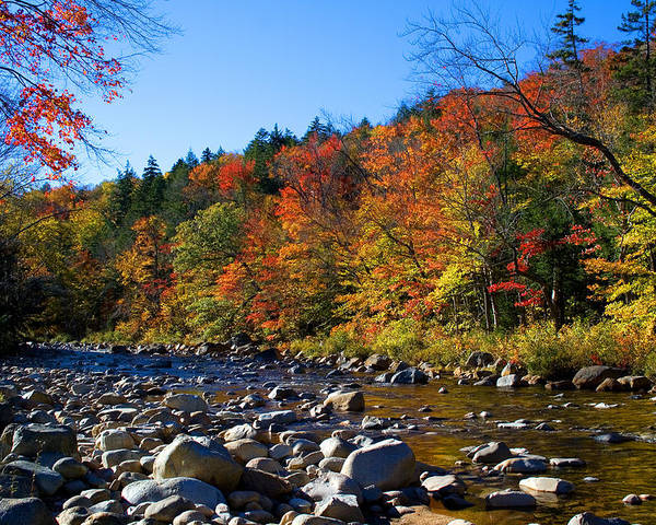 Nh Poster featuring the photograph Swift River In Autumn by Larry Landolfi