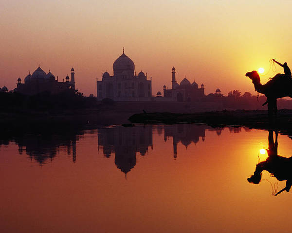 Horizontal Poster featuring the photograph Taj Mahal & Silhouetted Camel & Reflection In Yamuna River At Sunset by Richard I'Anson