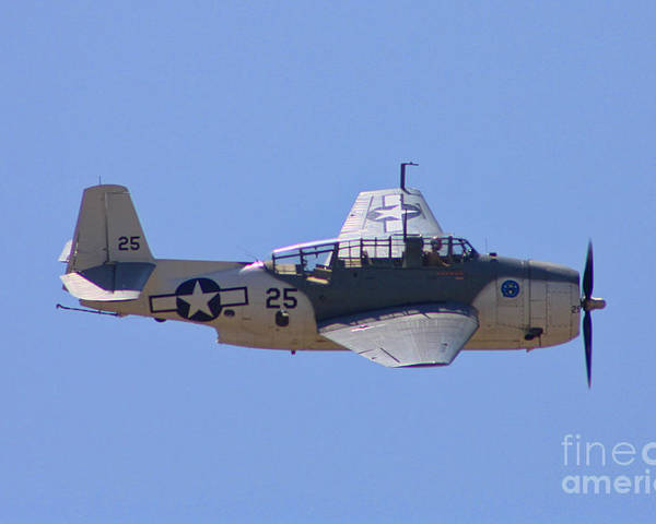 Grumman Tbd Avenger Poster featuring the photograph Tbd Avenger by Tommy Anderson