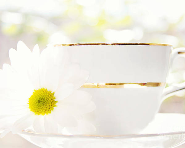 Teacup Poster featuring the photograph Teacup Filled With Sunshine by Kim Fearheiley