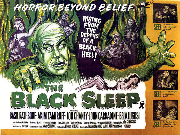 1950s Poster Art Poster featuring the photograph The Black Sleep, Close-up On Left Tor by Everett