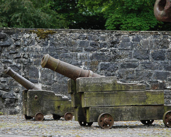 Landscape Poster featuring the photograph The Cannons Of Bunratty Castle by David Theroff