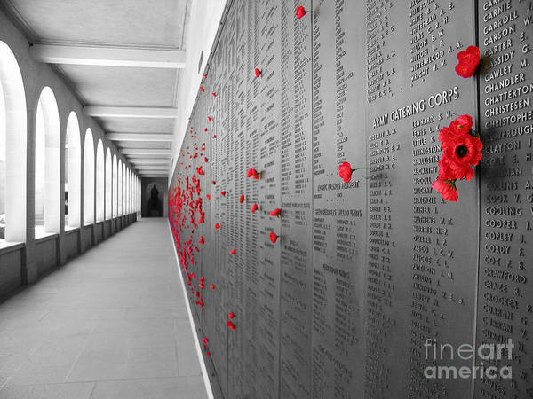 Australia Poster featuring the photograph The Color Of Remembrance by Stav Stavit Zagron
