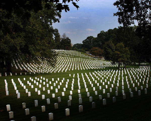 Arlington National Cemetery Poster featuring the photograph The Cost by Greg and Chrystal Mimbs