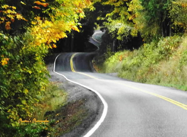Roads Poster featuring the photograph The Low Road by Sadie Reneau