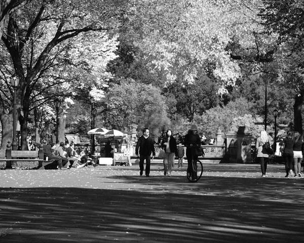 Black And White Poster featuring the photograph The Mall At Central Park In Black And White by Rob Hans