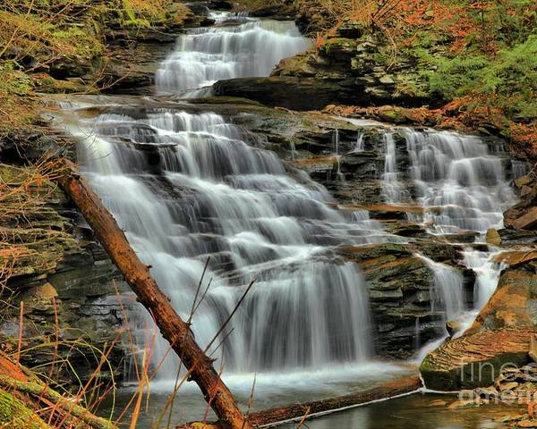 Ricketts Glen Poster featuring the photograph The Path Of Least Resistance by Adam Jewell