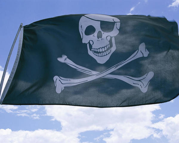 North America Poster featuring the photograph The Pirate Flag Known As The Jolly by Stephen St. John