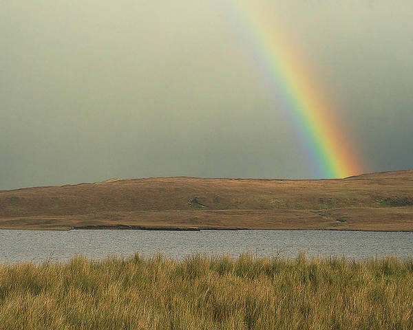 Nature Poster featuring the photograph The Pot Of Gold by David Resnikoff