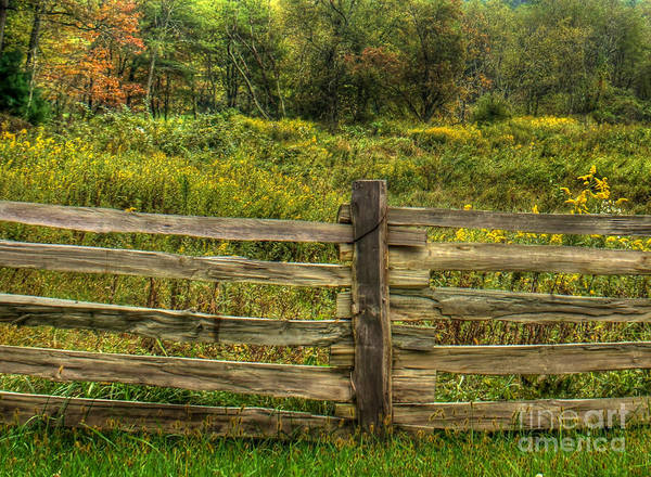 Split Rail Fence Poster featuring the photograph The Split Rail Meadow by Benanne Stiens