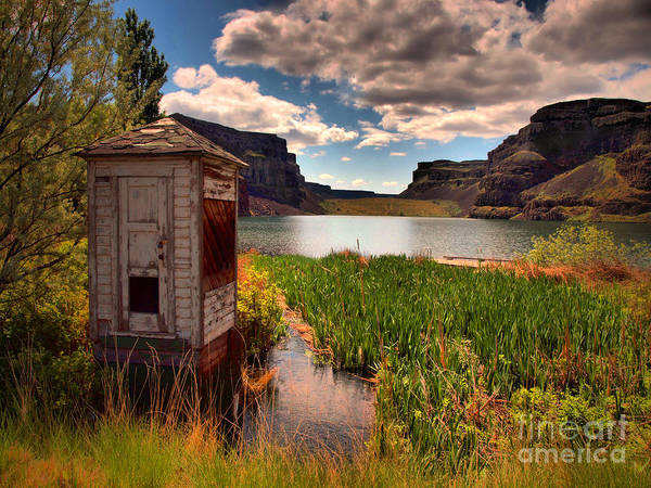 Shed Poster featuring the photograph The Water Shed by Tara Turner