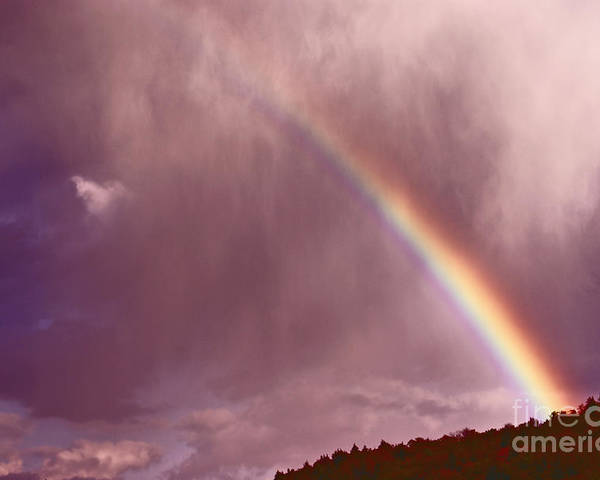 Rainbow Poster featuring the photograph There Is Always Hope by Aimelle
