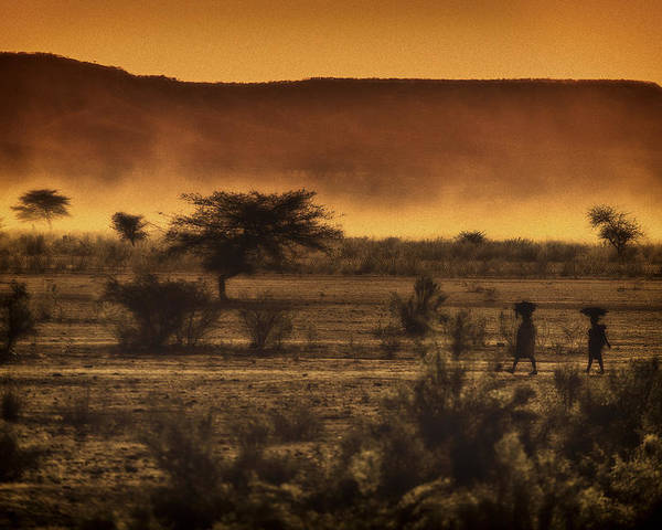Northern Poster featuring the photograph This Is Namibia No. 12 - Walking The Desert by Paul W Sharpe Aka Wizard of Wonders
