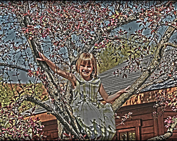 Little Girl In Tree.spring Blossoms Poster featuring the photograph Tomboy In The Tree by Randall Branham
