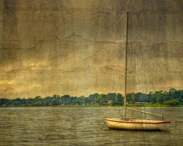 Jacksonville Poster featuring the photograph Tranquility by Debra and Dave Vanderlaan