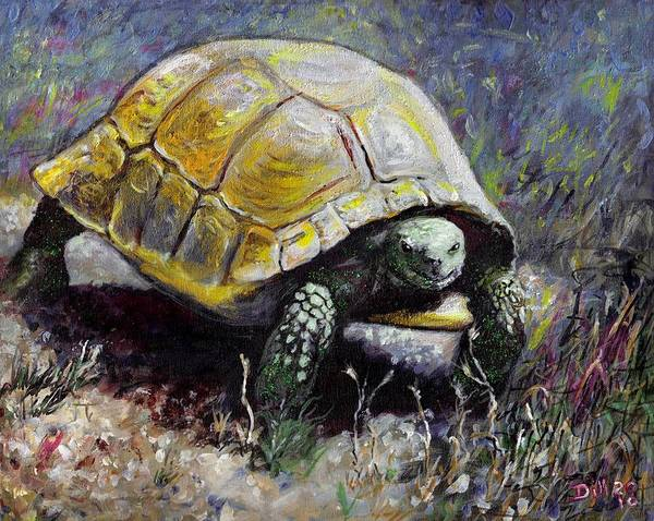 Turtle Nature Desert Green Wildlife Animal Shell Tortoise Poster featuring the painting Turtle by Rust Dill