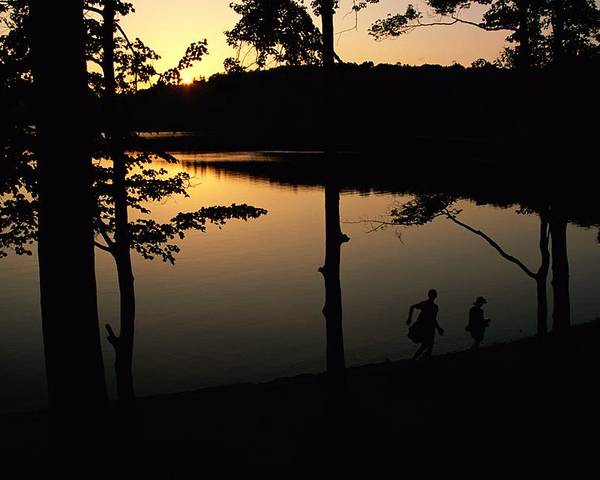 Subject Poster featuring the photograph Twilight Over Walden Pond, Made Famous by Tim Laman