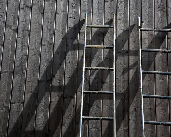 Horizontal Poster featuring the photograph Two Ladders Leaning Against A Wooden Wall by Meera Lee Sethi