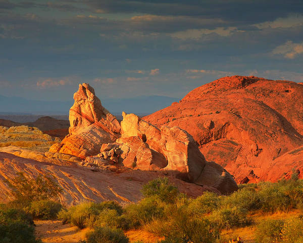 Nevada Poster featuring the photograph Valley Of Fire - Picturesque Desert by Christine Till