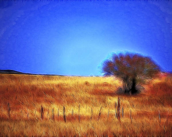 Fine Art Poster featuring the photograph Valley San Carlos Arizona by Donna Greene
