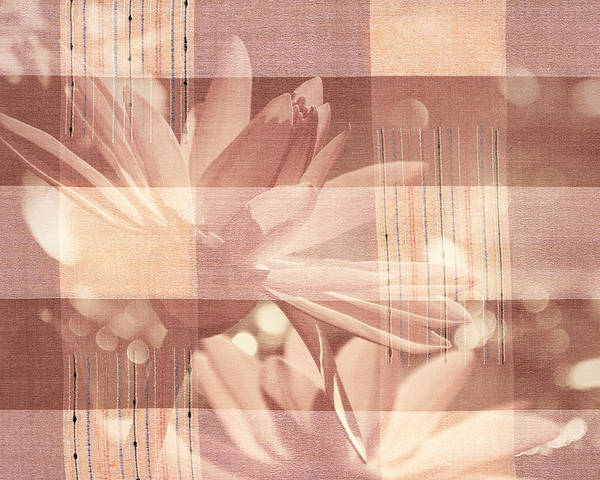 Flower Poster featuring the photograph Very Subtle by Trish Tritz