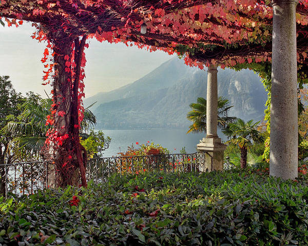 Pergola Poster featuring the photograph Villa Cipressi Pergola On Lake Como I by Greg Matchick