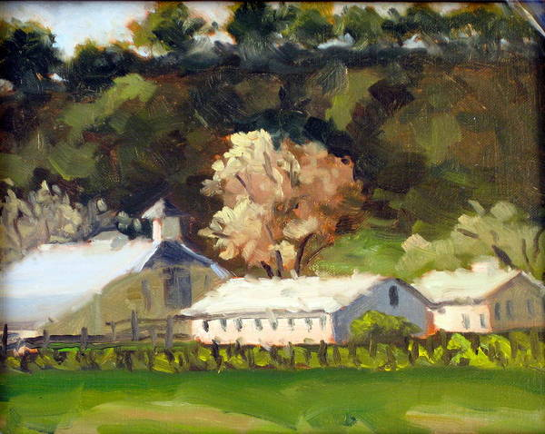 Barn Poster featuring the painting Vineyard Workers Quarters by Char Wood