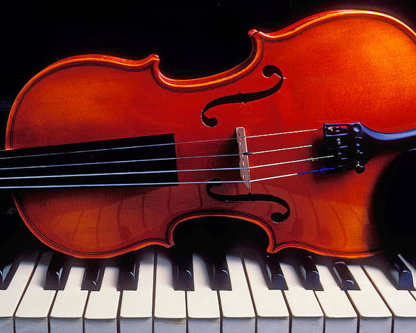 Violin Poster featuring the photograph Violin On Piano Keys by Garry Gay