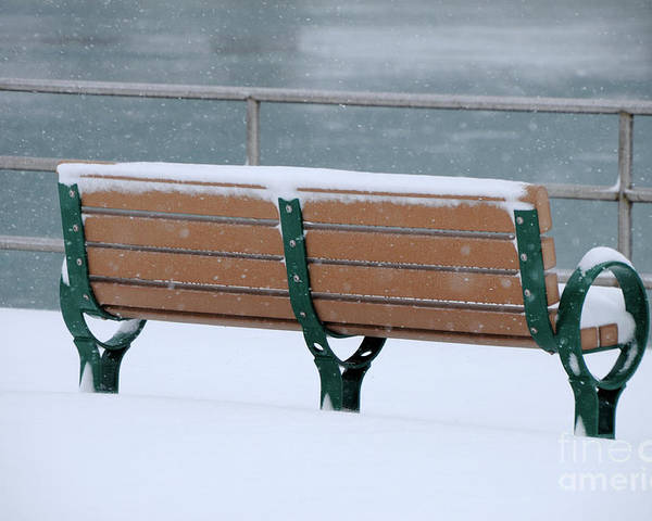 Bench Poster featuring the photograph Waiting For Summer by Ronald Grogan