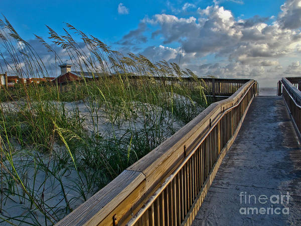 Walkway Poster featuring the photograph Walkway To The Beach by Scott Moore