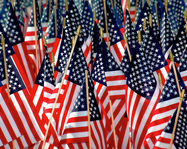 Flag Poster featuring the photograph Wall Of Us Flags by Carolyn Marshall