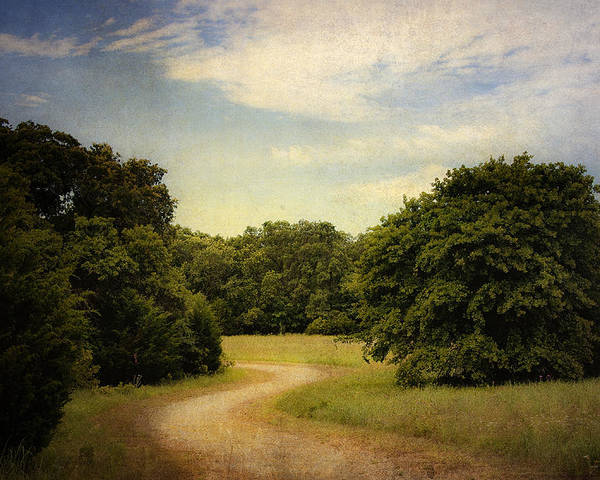 Landscape Poster featuring the photograph Wandering Path II by Tamyra Ayles