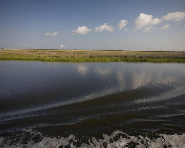 Day Poster featuring the photograph Water And Marsh In Plaquemines Parish by Tyrone Turner