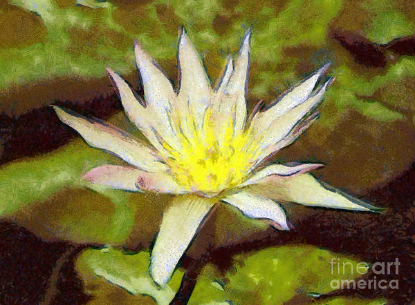 Water Lily Poster featuring the painting Water Lily by Odon Czintos